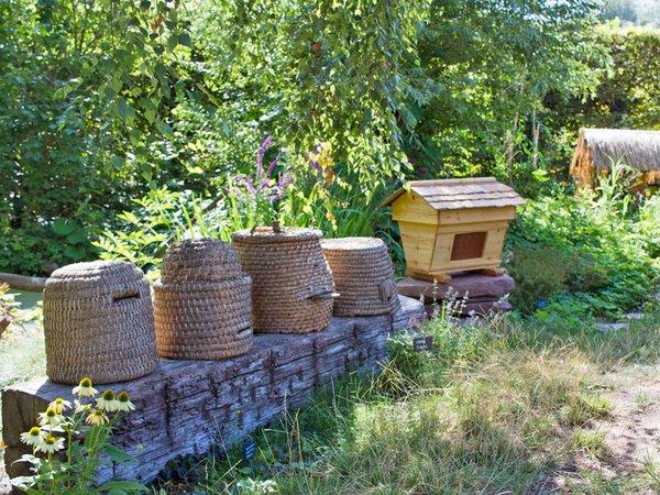 Bei den Entdeckertagen geht es um Beuten und Bienen, Foto: Zoo Leipzig