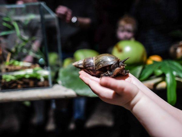 Die Welt der Tiere entdecken: Winterferien im Zoo, Foto: Zoo Leipzig