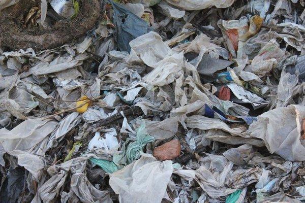 Abgesiebte Plastikanteile