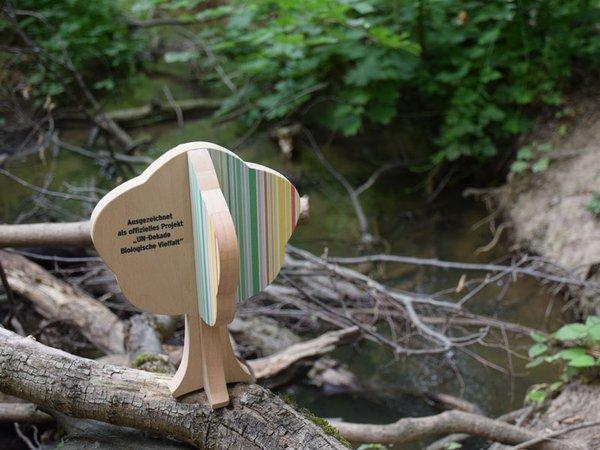 Auszeichnung am Burgauenbach, Foto: Karolin Tischer
