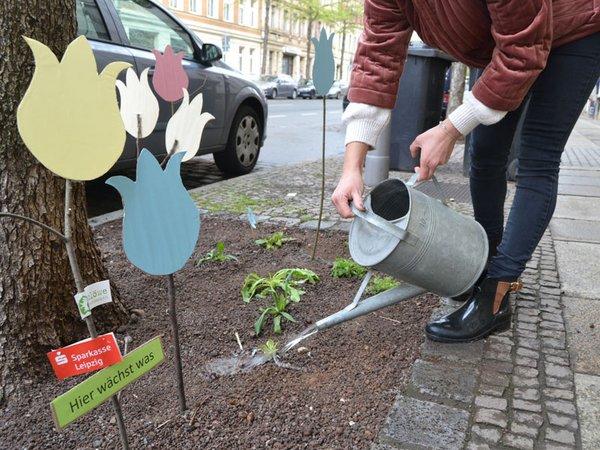Pflanzaktion: KÖ blüht auf, Foto: Ökolöwe