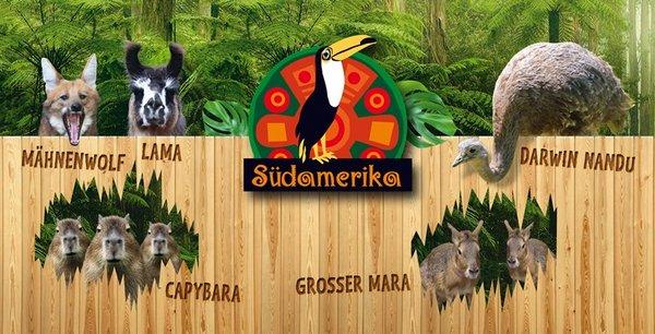 Tierbesatz im neuen Themengebiet SÜDAMERIKA im Zoo Leipzig